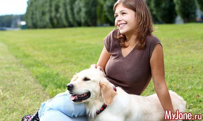 Топовые породы собак для активных хозяев