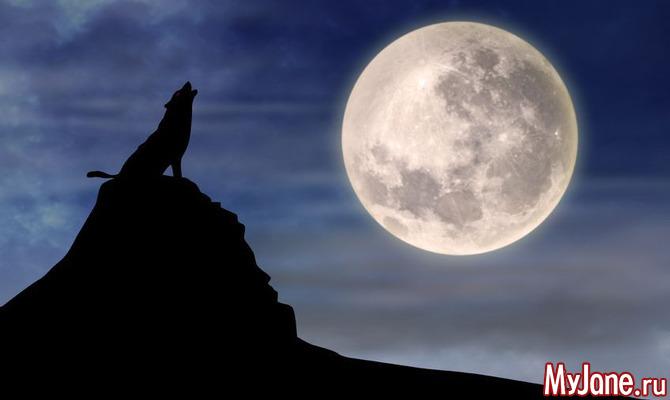 Астрологический прогноз на неделю с 04.06 по 10.06