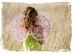 «Крылья бабочки» (Владимир Шебзухов)