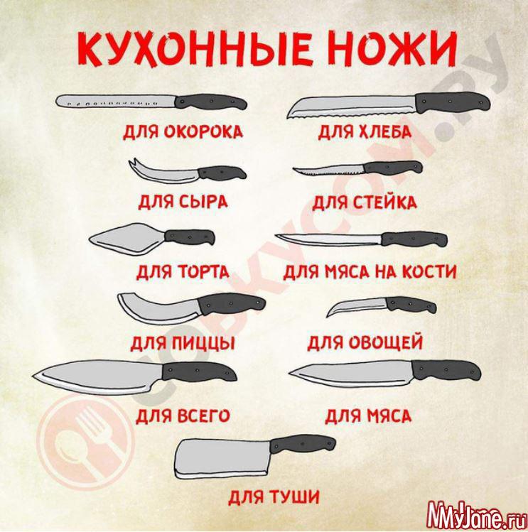 Разновидности ножей фото и описание
