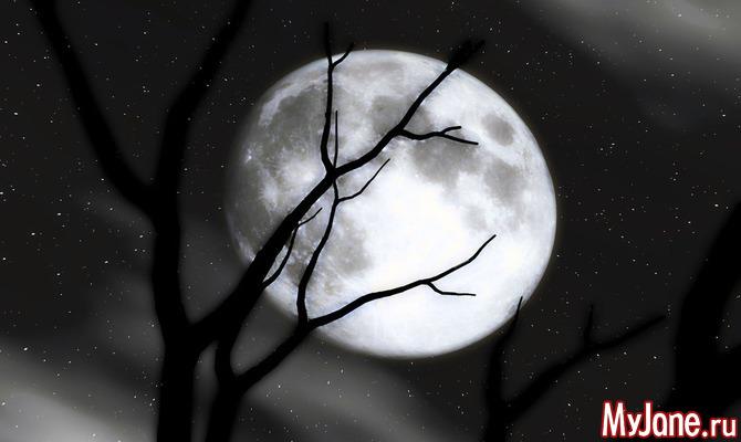 Астрологический прогноз на неделю с 26.11 по 02.12