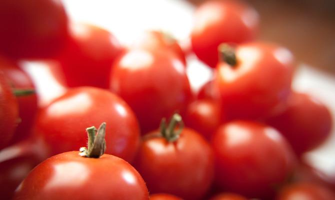 Праздник Сызранского помидора