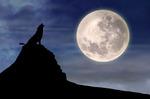 Любовный гороскоп на неделю с 19.08 по 25.08