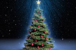 Саона рассказала о новогодней символике и ее значении