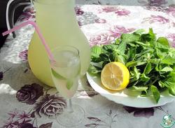 Лимонад домашний с мятой