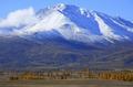 Прекрасные горы Апалачи