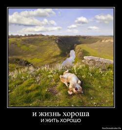 Кому на Руси жить хорошо.