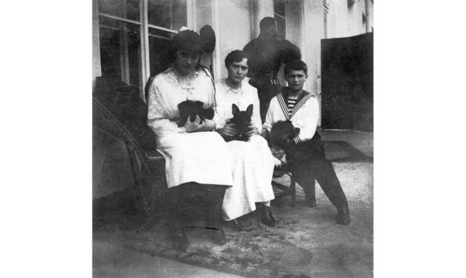Ортипо, Джимми и Джой: что стало с питомцами детей Николая II