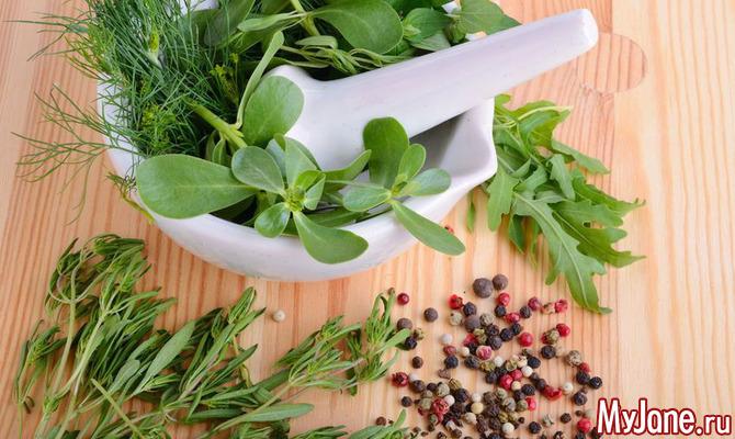 Столовая зелень: какие виды самые полезные