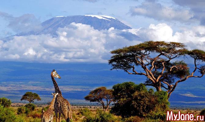 Эффектные вулканы, которые действительно стоит увидеть
