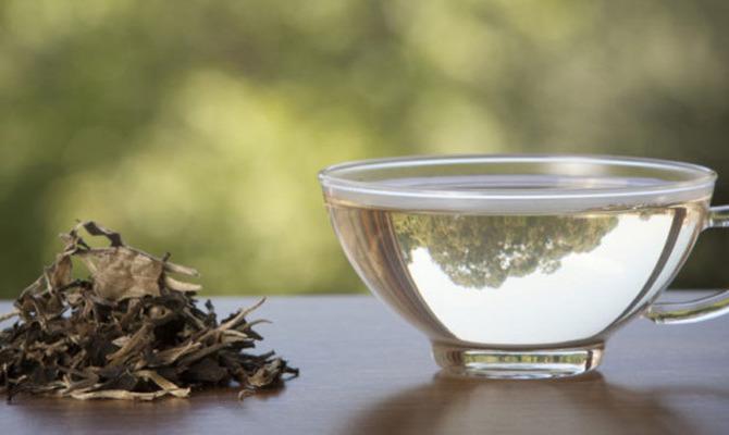О пользе белого чая