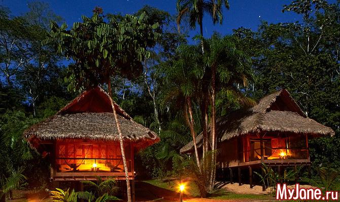 Куда поехать тем, кто мечтает пожить в джунглях?