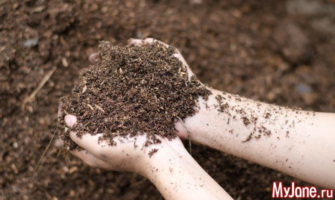 Секреты огородников. Как приготовить компост