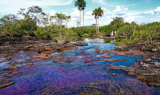 Каньо-Кристалес – самая яркая река в мире