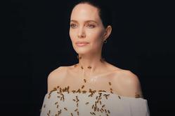 Анджелина Джоли приняла участие в фотосессии с роем пчел